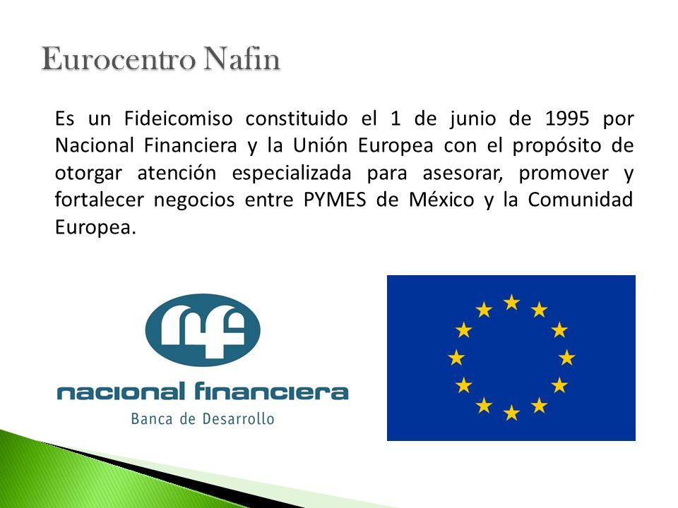 Es un Fideicomiso constituido el 1 de junio de 1995 por Nacional Financiera y la Unión Europea con el propósito de otorgar atención especializada para