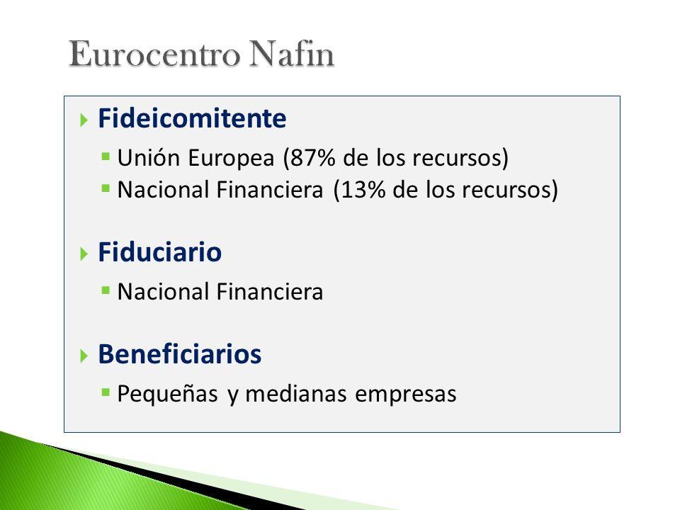 Fideicomitente Unión Europea (87% de los recursos) Nacional Financiera (13% de los recursos) Fiduciario Nacional Financiera Beneficiarios Pequeñas y m