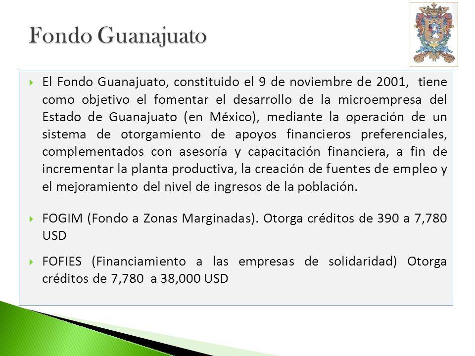 Fideicomitentes (Inversionistas): Banco Interamericano de Desarrollo (BID), en su carácter de Administrador del Fondo Multilateral de Inversiones (USD 3.9) Nacional Financiera (USD 2) Estado Libre y Soberano de Guanajuato, a través del Sistema Estatal de Financiamiento al Desarrollo (USD 2) Promotora Empresarial del Estado de Guanajuato, S.A.