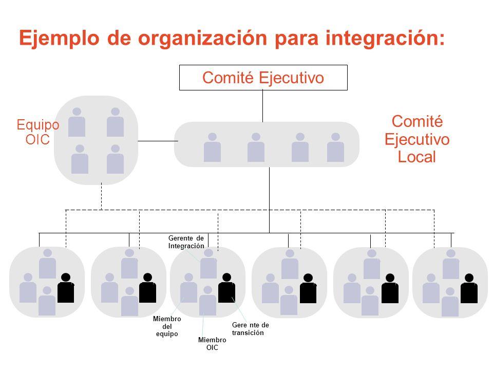 Equipo OIC Miembro del equipo Gerente de Integración Comité Ejecutivo Local Gere nte de transición Miembro OIC Comité Ejecutivo Ejemplo de organizació
