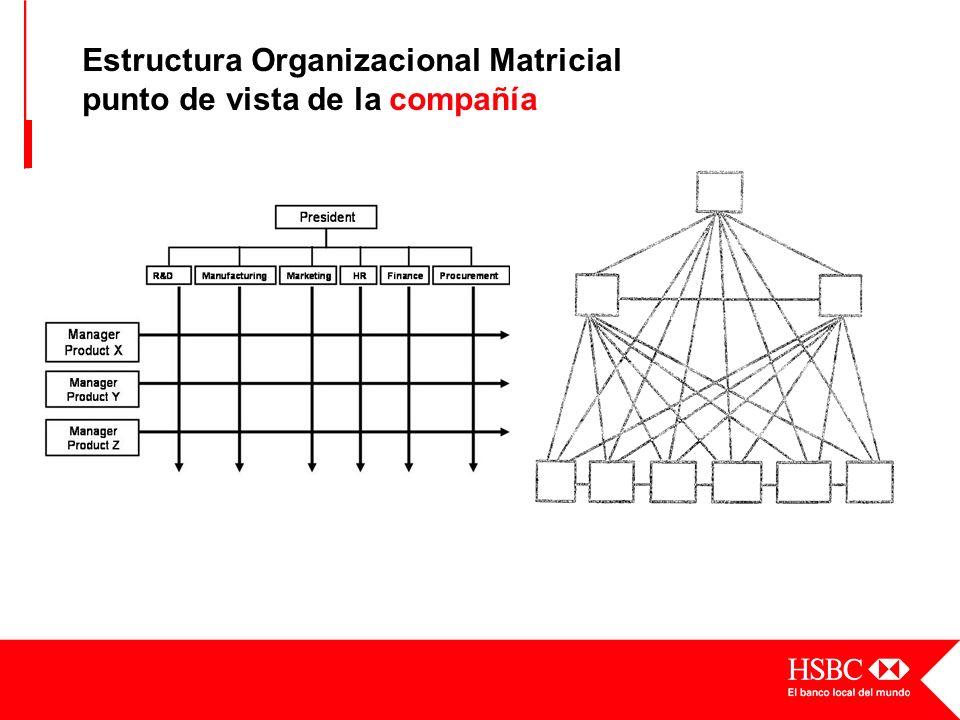 Estructura Organizacional Matricial punto de vista de la compañía