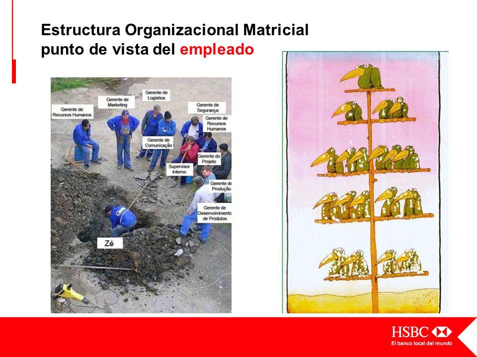 Estructura Organizacional Matricial punto de vista del empleado