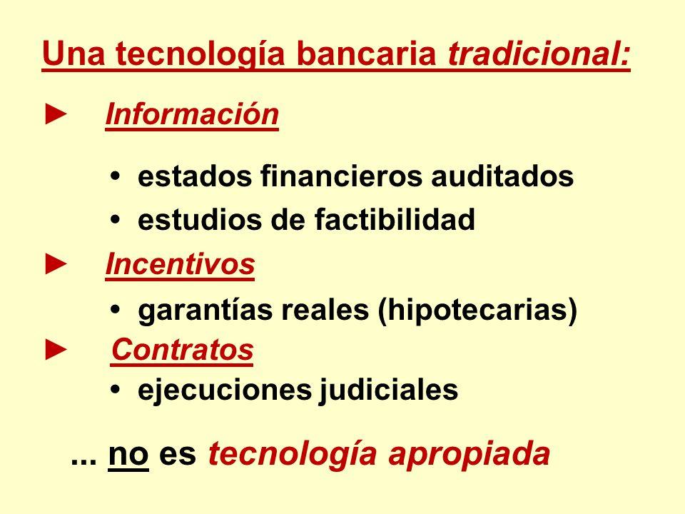 Una tecnología bancaria tradicional: Información estados financieros auditados estudios de factibilidad Incentivos garantías reales (hipotecarias) Con