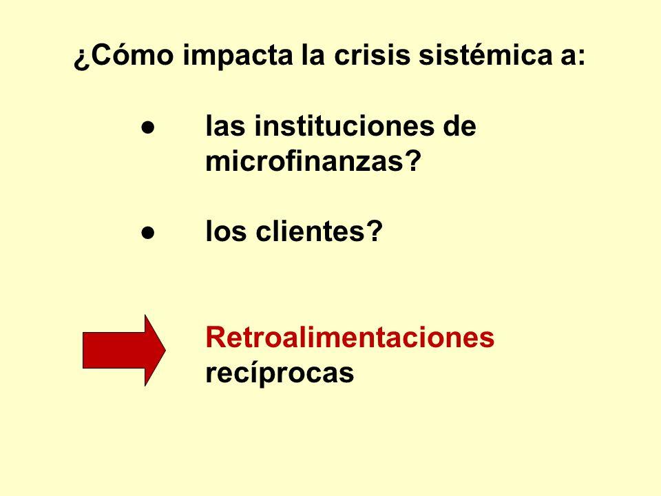 ¿Cómo impacta la crisis sistémica a: las instituciones de microfinanzas? los clientes? Retroalimentaciones recíprocas