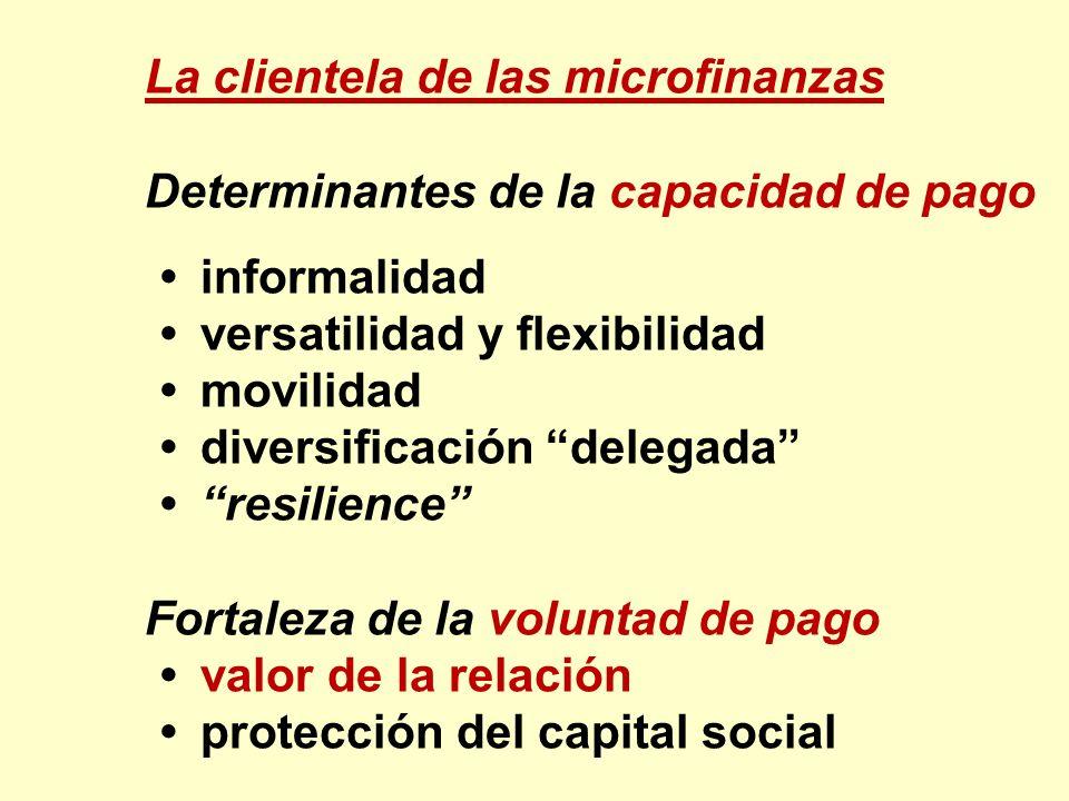 La clientela de las microfinanzas Determinantes de la capacidad de pago informalidad versatilidad y flexibilidad movilidad diversificación delegada re