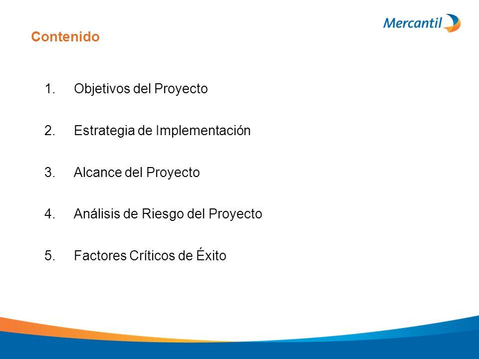 Contenido 1. Objetivos del Proyecto 2. Estrategia de Implementación 3. Alcance del Proyecto 4. Análisis de Riesgo del Proyecto 5. Factores Críticos de