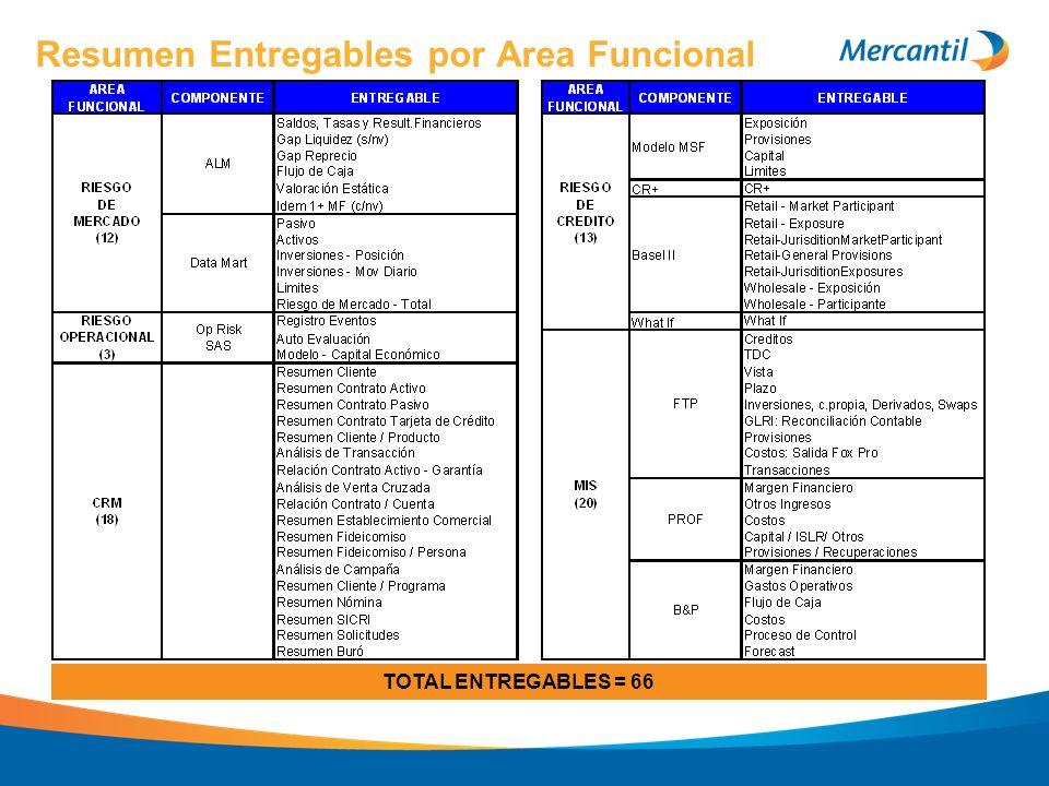 Resumen Entregables por Area Funcional TOTAL ENTREGABLES = 66