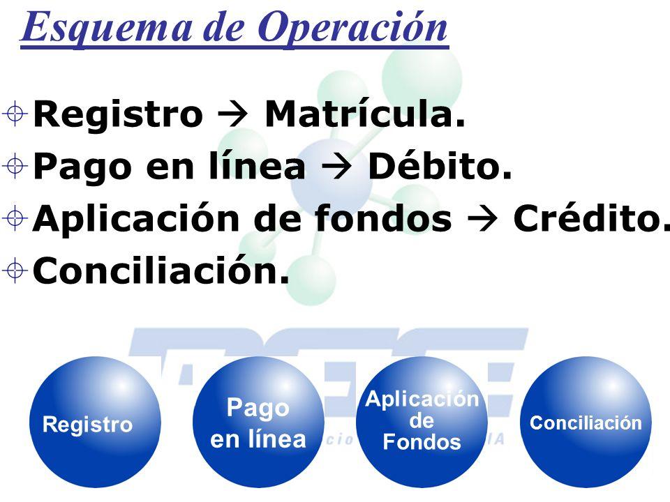 Esquema de Operación Registro Matrícula. Pago en línea Débito. Aplicación de fondos Crédito. Conciliación. Registro Pago en línea Aplicación de Fondos