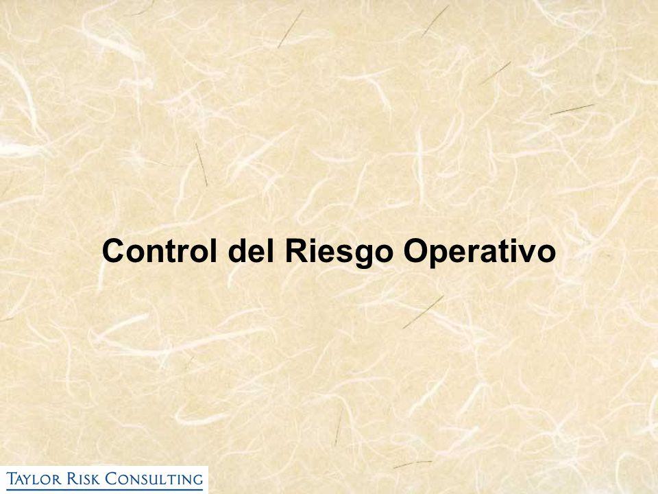 Control del Riesgo Operativo