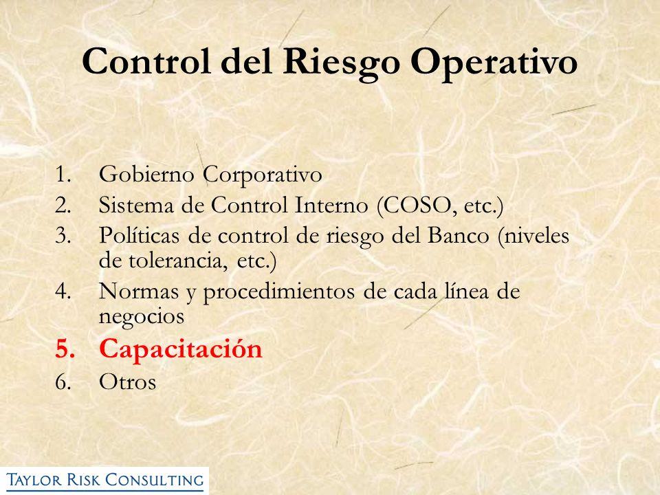 1.Gobierno Corporativo 2.Sistema de Control Interno (COSO, etc.) 3.Políticas de control de riesgo del Banco (niveles de tolerancia, etc.) 4.Normas y p