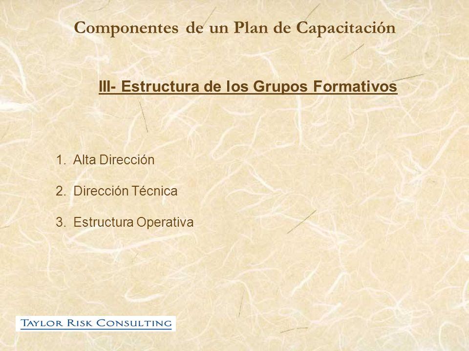 Componentes de un Plan de Capacitación III- Estructura de los Grupos Formativos 1.Alta Dirección 2.Dirección Técnica 3.Estructura Operativa