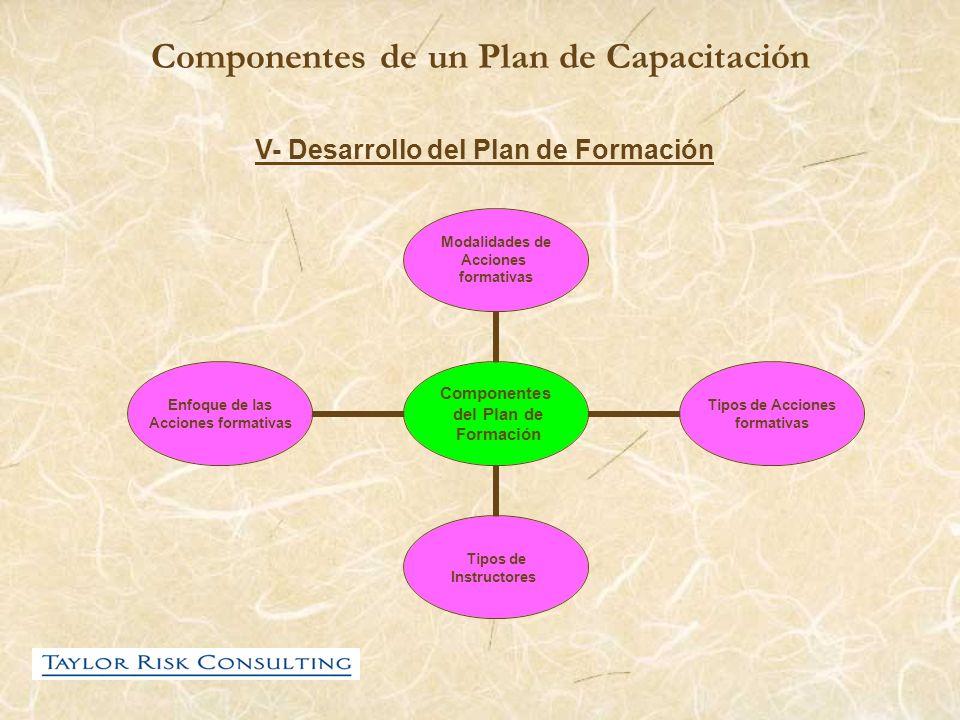 Componentes de un Plan de Capacitación V- Desarrollo del Plan de Formación Componentes del Plan de Formación Modalidades de Acciones formativas Tipos