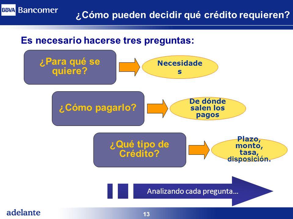 13 ¿Cómo pueden decidir qué crédito requieren? ¿Para qué se quiere? ¿Qué tipo de Crédito? ¿Cómo pagarlo? Necesidade s De dónde salen los pagos Plazo,
