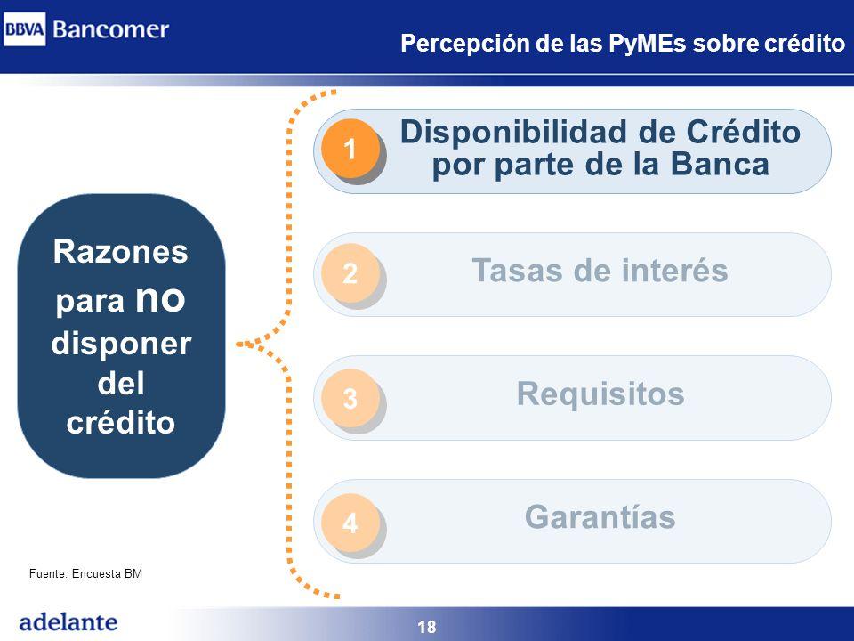 18 Percepción de las PyMEs sobre crédito Razones para no disponer del crédito Disponibilidad de Crédito por parte de la Banca Tasas de interés Requisi