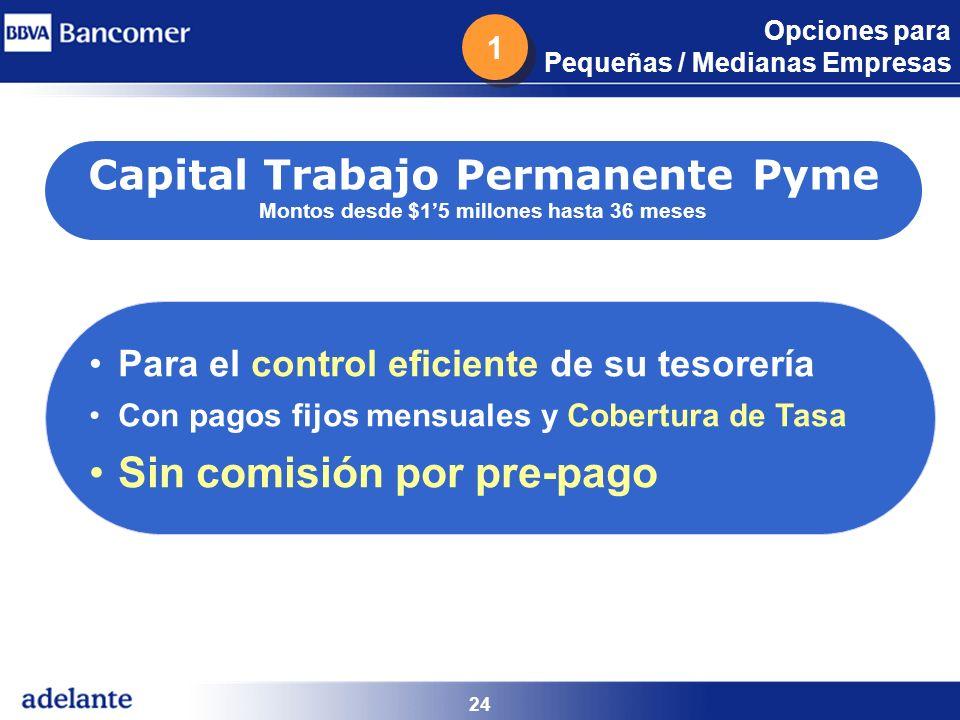 24 Capital Trabajo Permanente Pyme Montos desde $15 millones hasta 36 meses Para el control eficiente de su tesorería Con pagos fijos mensuales y Cobe