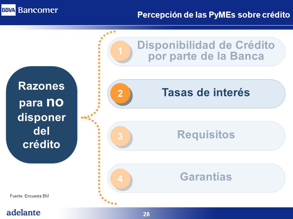 28 Percepción de las PyMEs sobre crédito Razones para no disponer del crédito Disponibilidad de Crédito por parte de la Banca Tasas de interés Requisi