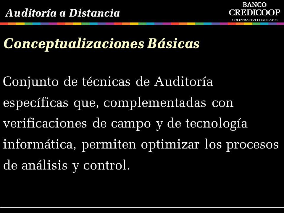 Conceptualizaciones Básicas Conjunto de técnicas de Auditoría específicas que, complementadas con verificaciones de campo y de tecnología informática,
