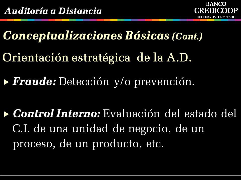 Fraude: Detección y/o prevención. Control Interno: Evaluación del estado del C.I. de una unidad de negocio, de un proceso, de un producto, etc. Orient