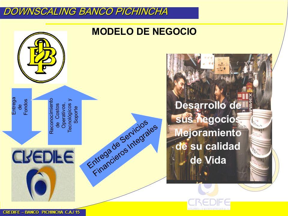 CREDIFE – BANCO PICHINCHA C.A./ 15 DOWNSCALING BANCO PICHINCHA MODELO DE NEGOCIO Entrega de Servicios Financieros Integrales Entrega de Fondos Desarro