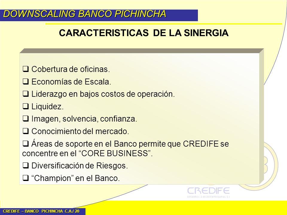 CREDIFE – BANCO PICHINCHA C.A./ 20 DOWNSCALING BANCO PICHINCHA CARACTERISTICAS DE LA SINERGIA Cobertura de oficinas. Economías de Escala. Liderazgo en