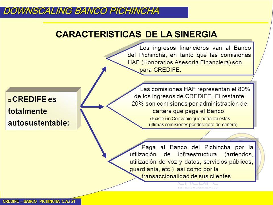 CREDIFE – BANCO PICHINCHA C.A./ 21 DOWNSCALING BANCO PICHINCHA CARACTERISTICAS DE LA SINERGIA CREDIFE es totalmente autosustentable: Los ingresos fina
