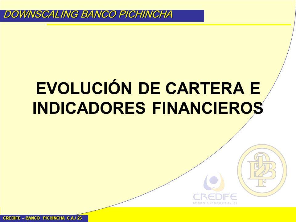 CREDIFE – BANCO PICHINCHA C.A./ 23 DOWNSCALING BANCO PICHINCHA EVOLUCIÓN DE CARTERA E INDICADORES FINANCIEROS