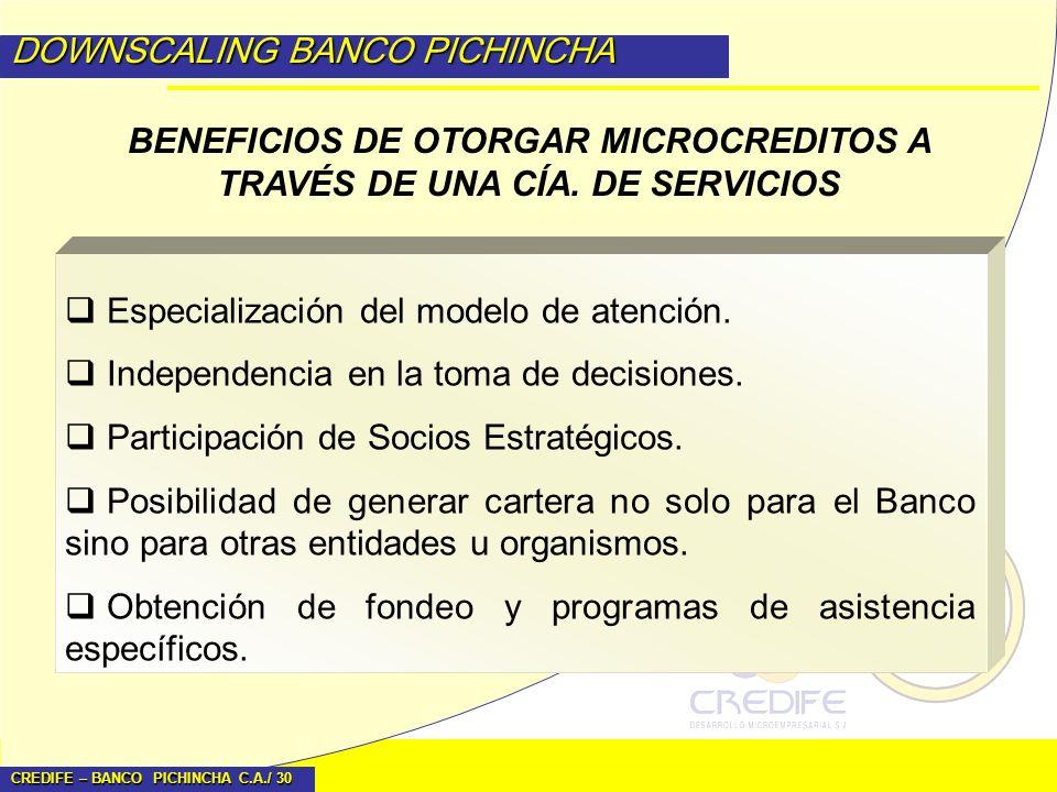 CREDIFE – BANCO PICHINCHA C.A./ 30 DOWNSCALING BANCO PICHINCHA BENEFICIOS DE OTORGAR MICROCREDITOS A TRAVÉS DE UNA CÍA. DE SERVICIOS Especialización d