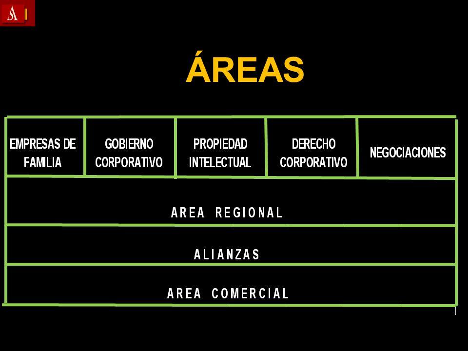 3.2.6 INFORME WINTER DE LA UE Temas generales Armonización y Competencia Armonización y Competencia Transparencia Transparencia Clasificación de las sociedades.