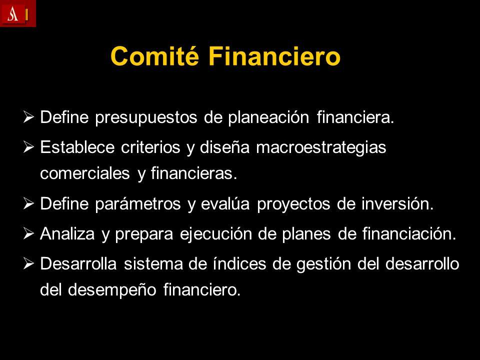 Comité Financiero Define presupuestos de planeación financiera. Establece criterios y diseña macroestrategias comerciales y financieras. Define paráme