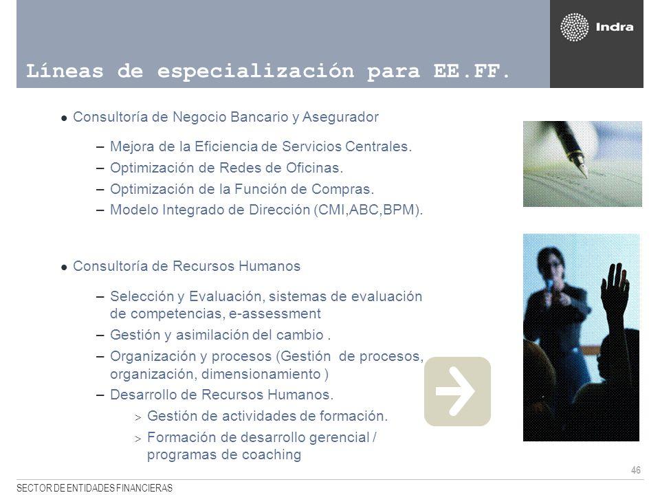 46 SECTOR DE ENTIDADES FINANCIERAS Líneas de especialización para EE.FF. Consultoría de Negocio Bancario y Asegurador –Mejora de la Eficiencia de Serv