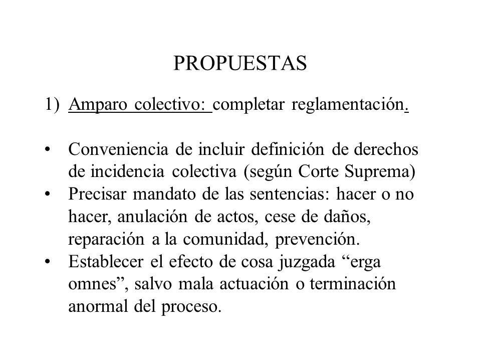 PROPUESTAS 1)Amparo colectivo: completar reglamentación. Conveniencia de incluir definición de derechos de incidencia colectiva (según Corte Suprema)
