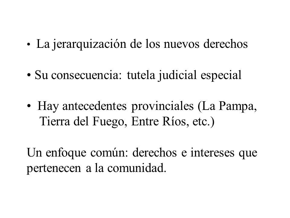La jerarquización de los nuevos derechos Su consecuencia: tutela judicial especial Hay antecedentes provinciales (La Pampa, Tierra del Fuego, Entre Rí