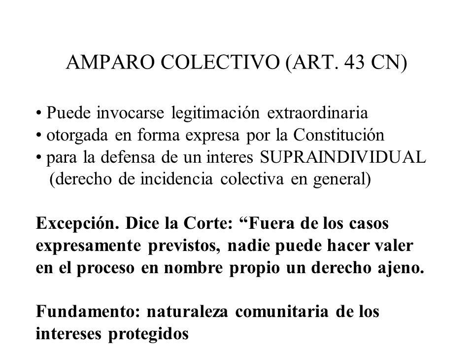 AMPARO COLECTIVO (ART. 43 CN) Puede invocarse legitimación extraordinaria otorgada en forma expresa por la Constitución para la defensa de un interes