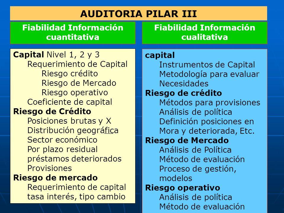 AUDITORIA PILAR III Fiabilidad Información cuantitativa Fiabilidad Información cualitativa Capital Nivel 1, 2 y 3 Requerimiento de Capital Riesgo créd