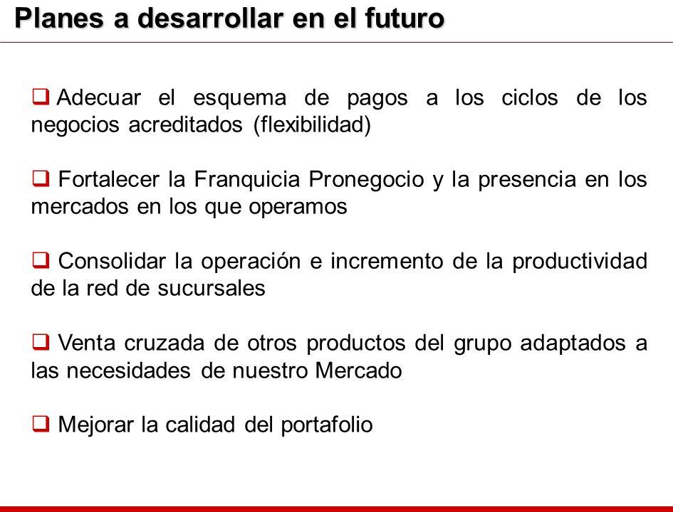 Planes a desarrollar en el futuro Adecuar el esquema de pagos a los ciclos de los negocios acreditados (flexibilidad) Fortalecer la Franquicia Pronego