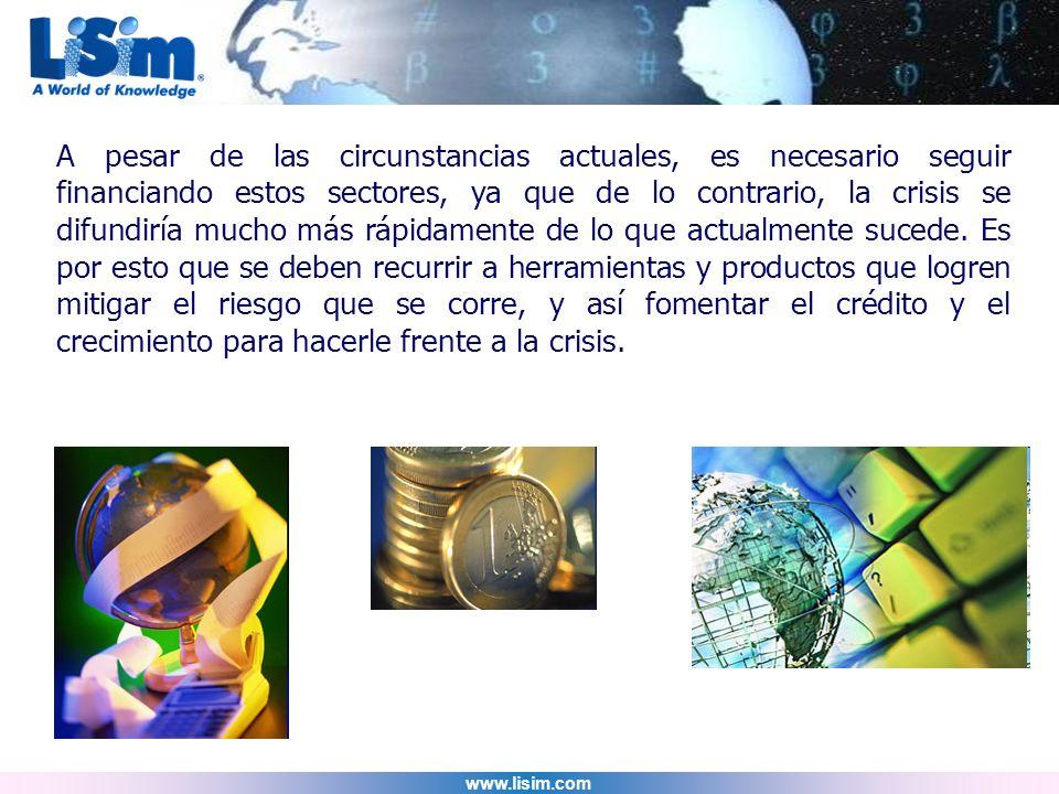 www.lisim.com A pesar de las circunstancias actuales, es necesario seguir financiando estos sectores, ya que de lo contrario, la crisis se difundiría