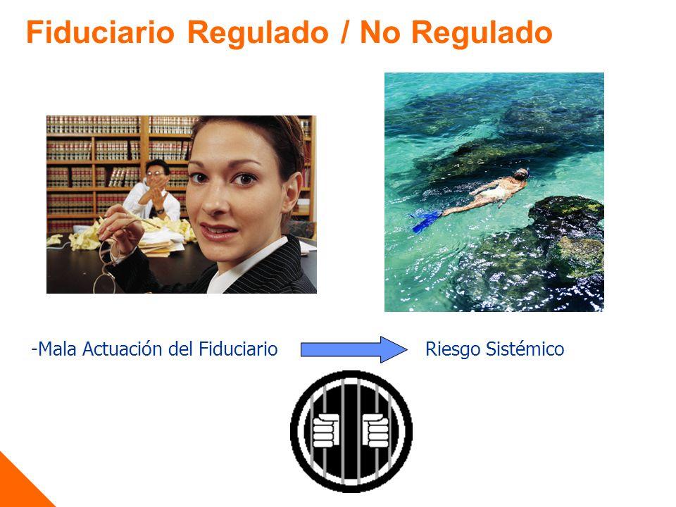 Fiduciario Regulado / No Regulado -Mala Actuación del FiduciarioRiesgo Sistémico