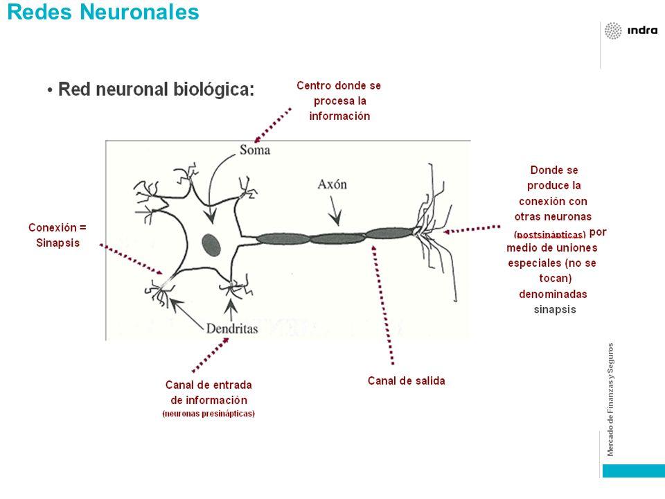 Mercado de Finanzas y Seguros Redes neuronales Las redes neuronales artificiales son un elemento de la Inteligencia Artificial. : - La Inteligencia Ar
