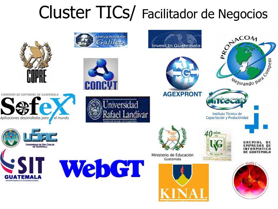 Cluster TICs/ Facilitador de Negocios