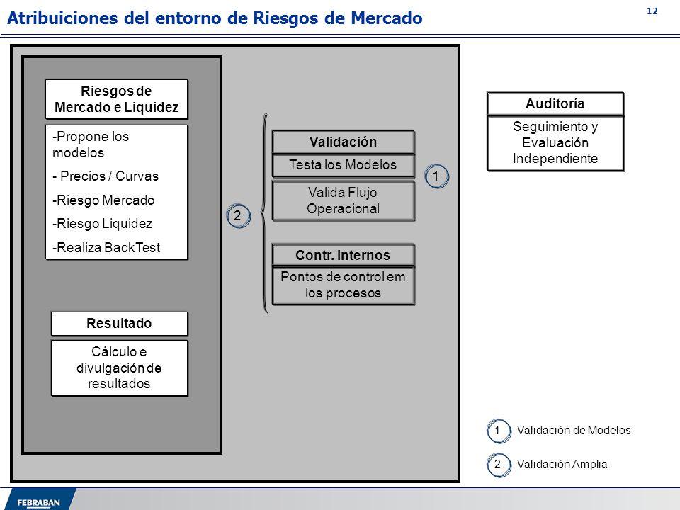 12 Atribuiciones del entorno de Riesgos de Mercado 1Validación de Modelos 2Validación Amplia Riesgos de Mercado e Liquidez -Propone los modelos - Prec