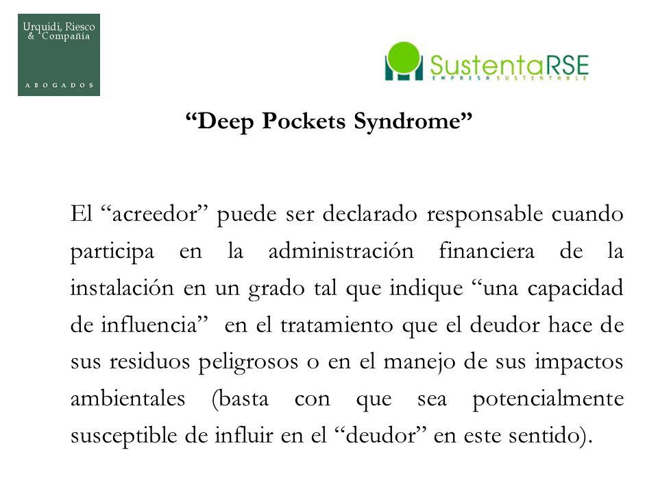 Deep Pockets Syndrome El acreedor puede ser declarado responsable cuando participa en la administración financiera de la instalación en un grado tal q