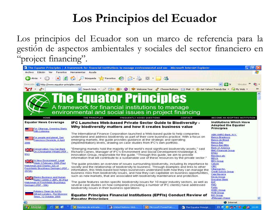 Los principios del Ecuador son un marco de referencia para la gestión de aspectos ambientales y sociales del sector financiero en project financing. L