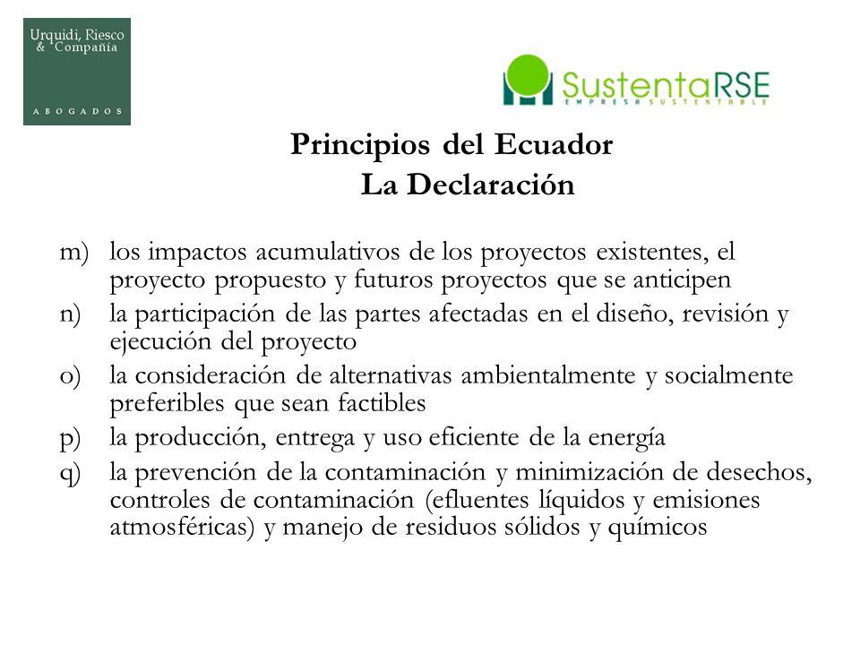 Principios del Ecuador La Declaración m)los impactos acumulativos de los proyectos existentes, el proyecto propuesto y futuros proyectos que se antici