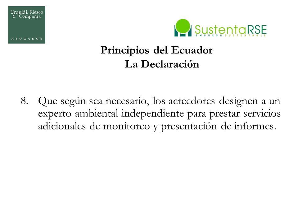 Principios del Ecuador La Declaración 8.Que según sea necesario, los acreedores designen a un experto ambiental independiente para prestar servicios a