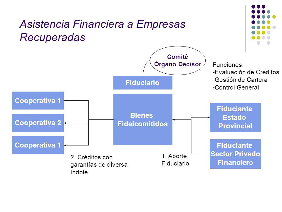 Bienes Fideicomitidos Fiduciario Cooperativa 1 Fiduciante Estado Provincial 2. Créditos con garantías de diversa índole. 1. Aporte Fiduciario Funcione