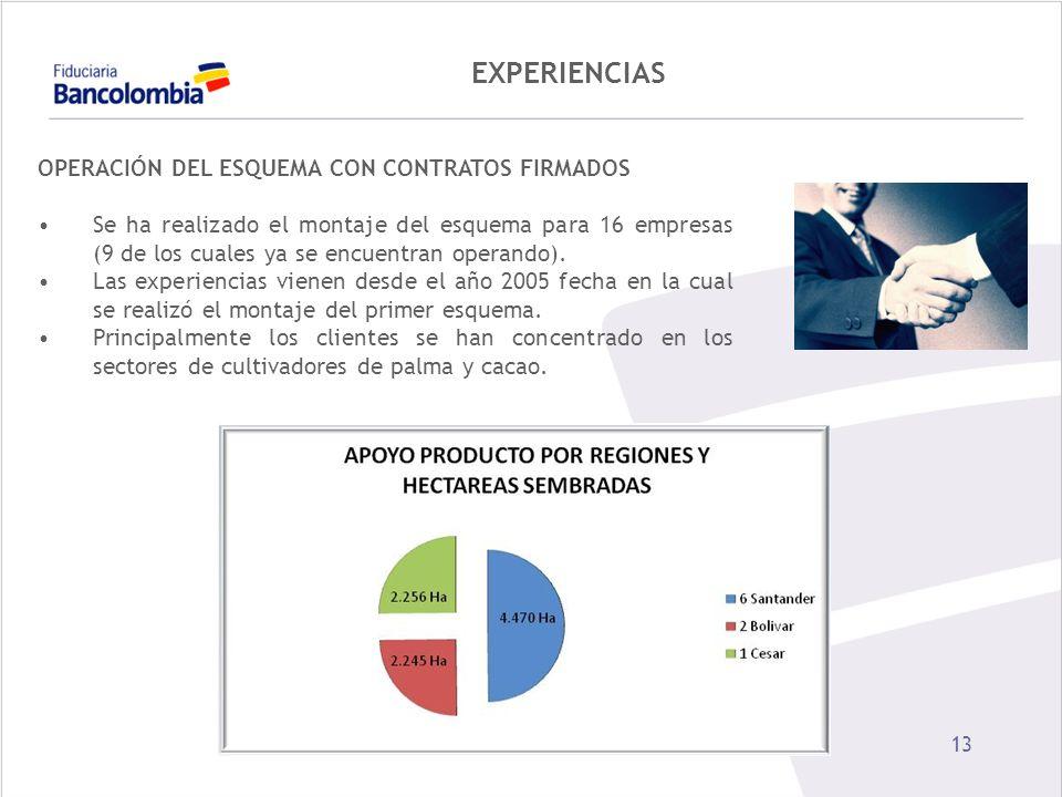 13 EXPERIENCIAS OPERACIÓN DEL ESQUEMA CON CONTRATOS FIRMADOS Se ha realizado el montaje del esquema para 16 empresas (9 de los cuales ya se encuentran