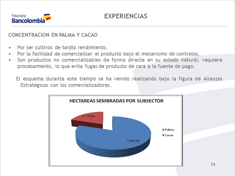 14 EXPERIENCIAS CONCENTRACION EN PALMA Y CACAO Por ser cultivos de tardío rendimiento. Por la facilidad de comercializar el producto bajo el mecanismo