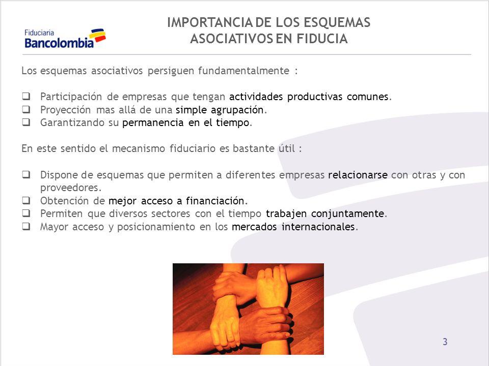 14 EXPERIENCIAS CONCENTRACION EN PALMA Y CACAO Por ser cultivos de tardío rendimiento.