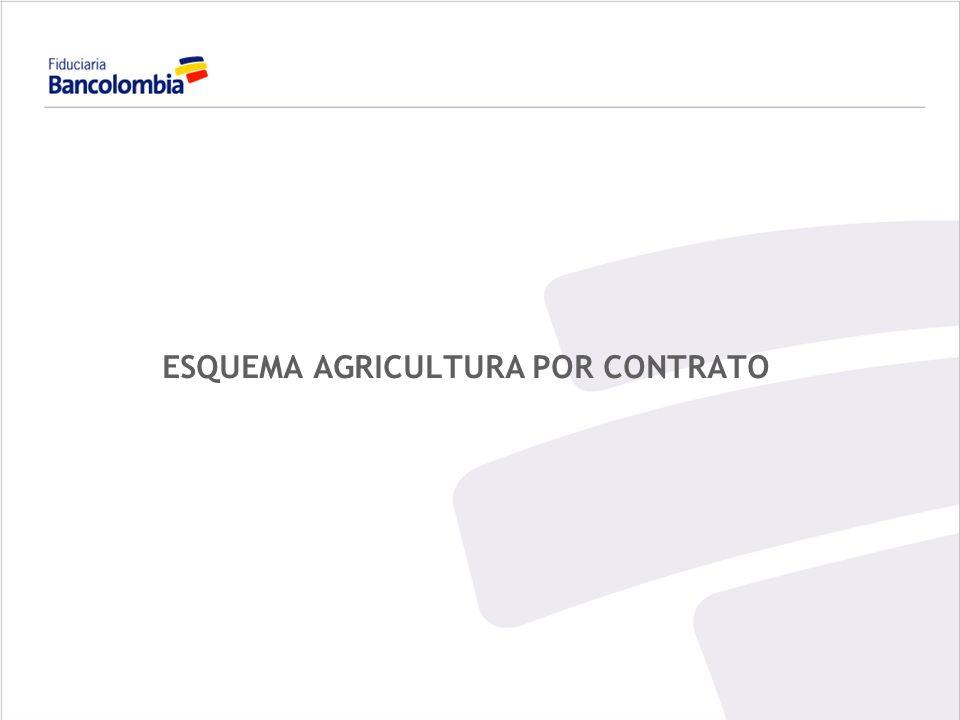 88 ESQUEMA DE FIDUCIA APLICADA A LA AGRICULTURA POR CONTRATO CONCEPTO / DESCRIPCION Es un esquema que permite a pequeños productores acceder al crédito y a las garantías del Fondo Agropecuario de Garantías - (FAG) otorgadas por FINAGRO, para proyectos agropecuarios y agroindustriales a través de su integración en un patrimonio autónomo que administra estos recursos y la fuente de pago conformada con los contratos de absorción de la producción.