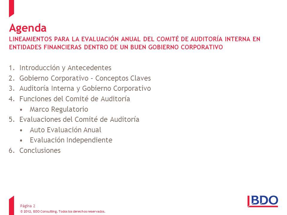 Agenda LINEAMIENTOS PARA LA EVALUACIÓN ANUAL DEL COMITÉ DE AUDITORÍA INTERNA EN ENTIDADES FINANCIERAS DENTRO DE UN BUEN GOBIERNO CORPORATIVO 1.Introdu